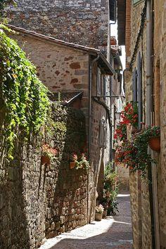 medievallove:    Narrow lane in Figeac,