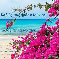New Month Greetings, Mina, Greek Quotes, Greece, Plants, Art, Cupcakes, Paint, Greece Country