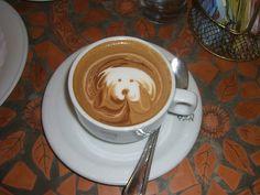 Arte com Café: Bichos