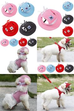 [Visit to Buy] Summer Small Pet Dog Outdoor Baseball Cap Hat With Ear Holes Canvas For Dog Accessories Hiking Pet Products 4 Colors #Advertisement