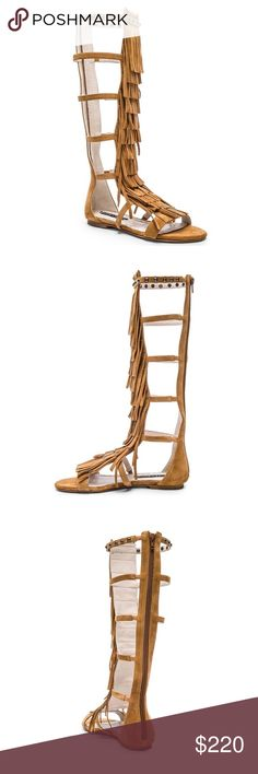 """Alice + Olivia Fringe Gladiator Sandals❤️NWT Never worn alice + olivia 'Paula' fringe knee high gladiator sandals. Suede upper with leather lining and soles. Has back zip closure. Shaft is approx 15.5"""" with an approx 14"""" circumference. Gorgeous! Perfect for festival season with a skirt or shorts. The color is toffee or tan. The pic with the black sandals is to show how they look on. Sold out. Alice + Olivia Shoes Sandals"""