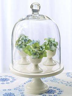 Egg cups filled with flower buds and a cloche make a cute centerpiece