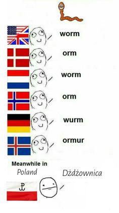 Funny Cartoon Memes, Funny Memes Images, Stupid Funny Memes, Funny Relatable Memes, Wtf Funny, Funny Comics, Funny Humor, Polish Memes, Funny Mems