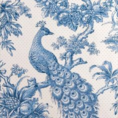 Peacock wallpaper | Bird wallpaper | Wallpaper design ideas | Wallpaper | PHOTO GALLERY | Housetohome.co.uk