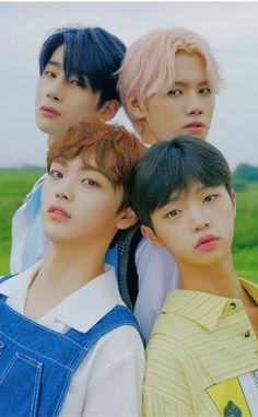 I Hate Boys, My Boys, Swing, Quantum Leap, Produce 101, Hyungwon, Debut Album, Kpop Boy, Boyfriend Material