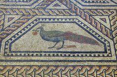 Roman Mosaic. Peacock With an Orange. Cologne (Colonia Claudia Ara Agrippinensium), Germany.   http://www.mariamilani.com/ancient_rome/Ancient_Roman_Mosaics.htm