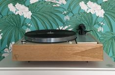 Thorens et Rega plinthe Audio Acoustique. Audio Hifi, Restaurant, Turntable, Decks, Tray, Pizza, Green, Kitchen, Cucina