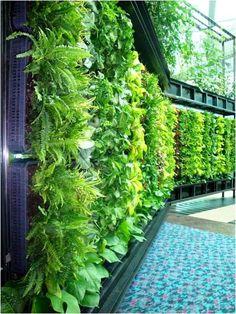 DIY Thursday: 10 Vertical Gardens for Your Home. Kratten met kippengaas en gaten voor planten.