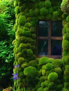 """""""Jardín vertical"""" de musgo. ¿Alguien sabe algo más de él?"""