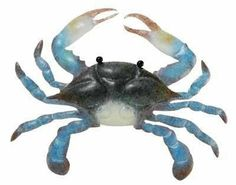 Coastal MD Blue Crab Metal Wall Art Decor by Regal. Save 18 Off!. $32.88. Handpainted Metal. Approx 19 inches high x 15 inches wide. Coastal MD Blue Crab Metal Wall Art Decor