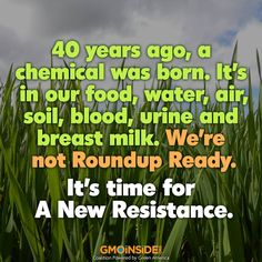 FUND A FILM! Roundup is showing up everywhere! Watch this outrageous trailer for the film A New Resistance: http://vimeo.com/98732877 Show your support for Ed Brown's new film! #Donate here: https://www.indiegogo.com/projects/a-new-resistance#description #GMOs #Roundup #StopMonsanto