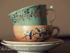 fine art photography golden leaves teacups by WhittakerPhotography, $25.00