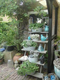 Een prachtige tuin om te bezoeken.  http://dewaddentuun.blogspot.nl/