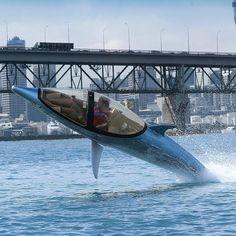 Dolphin/Shark Power Boat