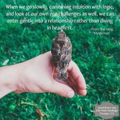 """It is up to each individual to carefully approach well-constructed """"fronts"""" of people who are in the healing industries.  For me I like to know how any one who I might let into my life to support me is living his/her own life such as what life issues have they confronted and how did they respond. I have met many (many) extraordinarily talented medicine people that are so unbalanced in their own Earth journey that I find them toxic. I have compassion but also do not want that in my arena of…"""