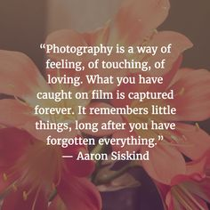 99 Inspirational Quotes About Photography - The Photo Argus Quotes About Photography, Photography Camera, Learn Photography, Creative Photography, Motivational Quotes, Inspirational Quotes, Perspective Photography, Photo Quotes, Picture Quotes
