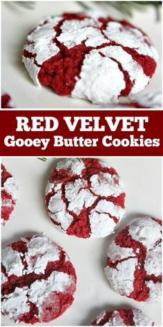 Sharing a recipe for Red Velvet Gooey Butter Cookies. These are a delicious and rich chewy cookie that is perfectly festive for the holidays. Best Cookie Recipes, Cupcake Recipes, Baking Recipes, Dessert Recipes, Gourmet Cupcakes, Baking Ideas, Fun Desserts, Sweet Recipes, Delicious Desserts