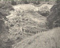 Battle of Grassy Knoll WWll Solomon Islands
