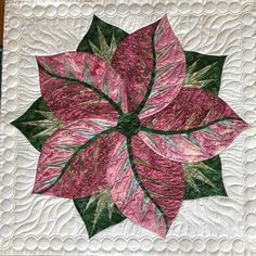 Poinsettia, Quiltworx.com, Made by Jane Schwab Coons Free Paper Piecing Patterns, Quilt Patterns, Table Topper Patterns, Quilting Designs, Quilting Ideas, Foundation Paper Piecing, Beautiful Drawings, Small Quilts, Free Motion Quilting