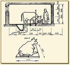 Cattle Barn, Beef Cattle, Mini Cows, Mini Farm, Livestock Farming, Goat Farming, Cow Shed Design, Gado Leiteiro, Raising Farm Animals