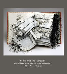 Carol Strause FitzSimonds - Printmaking, Book Arts