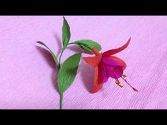 How to Make Fuchsia Crepe Paper flowers - Flower Making of Crepe Paper - Paper Flower Tutorial - YouTube