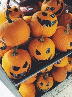 I love Pumpkins Halloween Ii, Halloween Cosplay, Halloween Pumpkins, Happy Halloween, Halloween Decorations, Halloween Season, Halloween Ideas, Favorite Holiday, Holiday Fun
