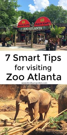 Heading to Zoo Atlanta? Then check out my Smart Tips for Visiting Zoo Atlanta with helpful tips like the best time to visit, ways to save money on tickets, parking tips, and more! Us Travel Destinations, Family Vacation Destinations, Vacation Spots, Family Vacations, Vacation Ideas, Brisbane, Melbourne, Visit Atlanta, Atlanta Zoo