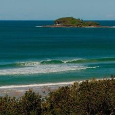 Old Woman Island - Sunshine Coast, Australia
