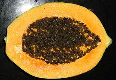 la papaya contiene una enzima conocida como papaína, que se asemeja a ciertas enzimas del estómago; la cual facilita y mejora la digestión, reduciendo la acidez. Por ello, esta fruta puede ser consumida en ciertas afecciones como gastritis, hernia de hiato, úlcera gastroduodenal y gastroenteritis.