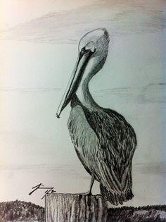 Coastal Pelican framed original pencil drawing by paintingjimmy1, $58.00