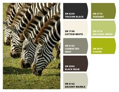 Great combo- neutrals with a pop of green!     Paint colors from Chip It! by Sherwin-Williams