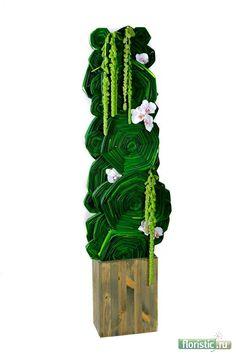 transformação dos tipos de folhas e sua utilização - Página 36 - Floricultura: floral fórum popular