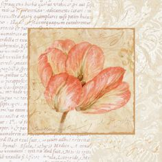 PRINTS ... AND WORK WITH FLOWERS (p. 2) | Learn Crafts is facilisimo.com