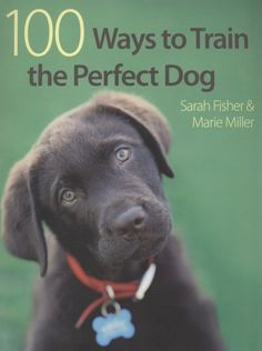 100 Ways To Train The Perfect Dog   by Sarah Fisher & Marie Miller.  Dog Training #dogtraining #sarahfisher #mariemiller