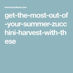 get-the-most-out-of-your-summer-zucchini-harvest-with-these
