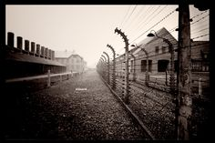 Auschwitz, Poland. I don't have words for what it would be like to walk along this path and think of those who walked it before.