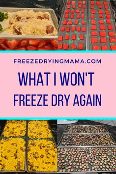Freeze Dried Fruit, Freeze Dried Meals, Harvest Right Freeze Dryer, Freezing Eggs, Freeze Drying Food, Dried Apples, Dehydrated Food, Dehydrator Recipes, Frozen Meals