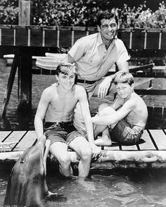 on plongeait avec Flipper le dauphin...