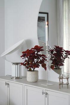 LJUVA MAGNOLIA   FAMILJELIV INREDNING MODE Future House, Interior And Exterior, Living Room, Sideboard, Magnolia, Flowers, Rooms, King, Inspiration