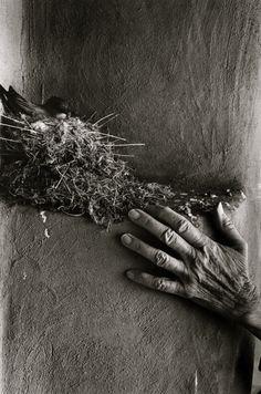 "poboh: ""The hands of Georgia O'Keeffe,  John Loengard . American, born in 1934 (Source:  aima007.blogspot  ) """