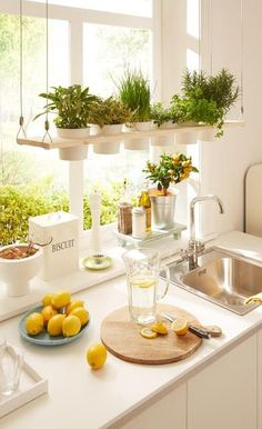 kitchen oranization idea