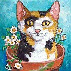 """""""Pottert Cat"""" - Campbell"""