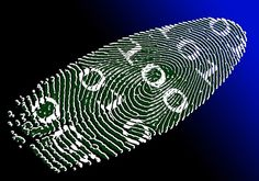 The past, present and future of biometrics