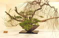 Candle Arrangements, Ikebana Arrangements, Floral Arrangements, Flower Arrangement, Japanese Culture, Japanese Art, Japan Flower, Bonsai, Japanese Flowers