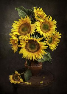 Sunflower Pictures, Sunflower Art, Happy Flowers, Beautiful Flowers, Pictures To Paint, Art Pictures, Sunflowers And Daisies, Art Floral, Watercolor Art