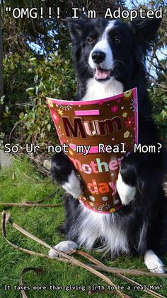 """""""That's OK...It takes more than giving birth to be a real Mom...Happy Mother's Day Mother.... Love Asha xxx"""