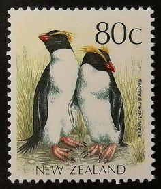 Fiordland crested penguin, New Zealand