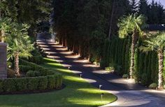When designing your backyard, don't forget to carefully plan your lighting as well. Get great ideas for your backyard oasis here with our landscape lighting design ideas. Driveway Design, Driveway Landscaping, Modern Driveway, Asphalt Driveway, Farmhouse Landscaping, Driveway Lighting, Outdoor Lighting, Lighting Ideas, Tree Lined Driveway