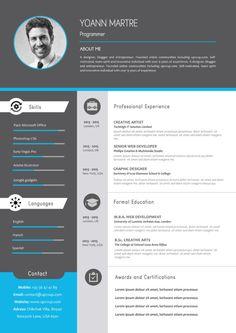 Cv Design, Resume Design, Cv Ingenieur, Resume Format For Freshers, Resume Profile, Infographic Resume, Cv Template, Web Development